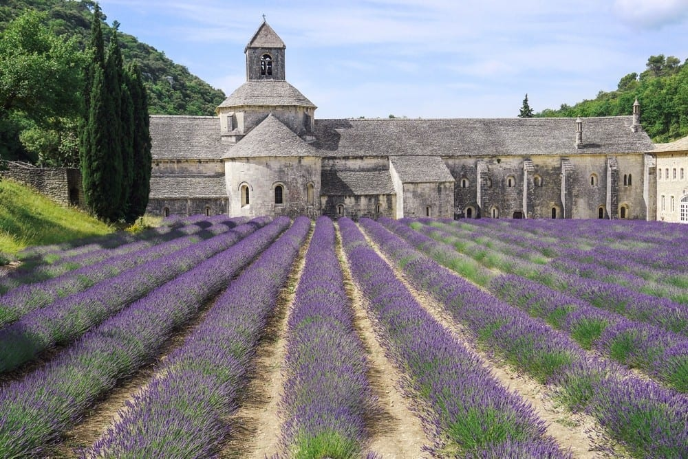 Abbaye lavande by Mademoiselle M